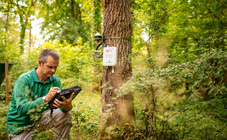 Vodafone studying the use of the NB-IoT technology in UK forests